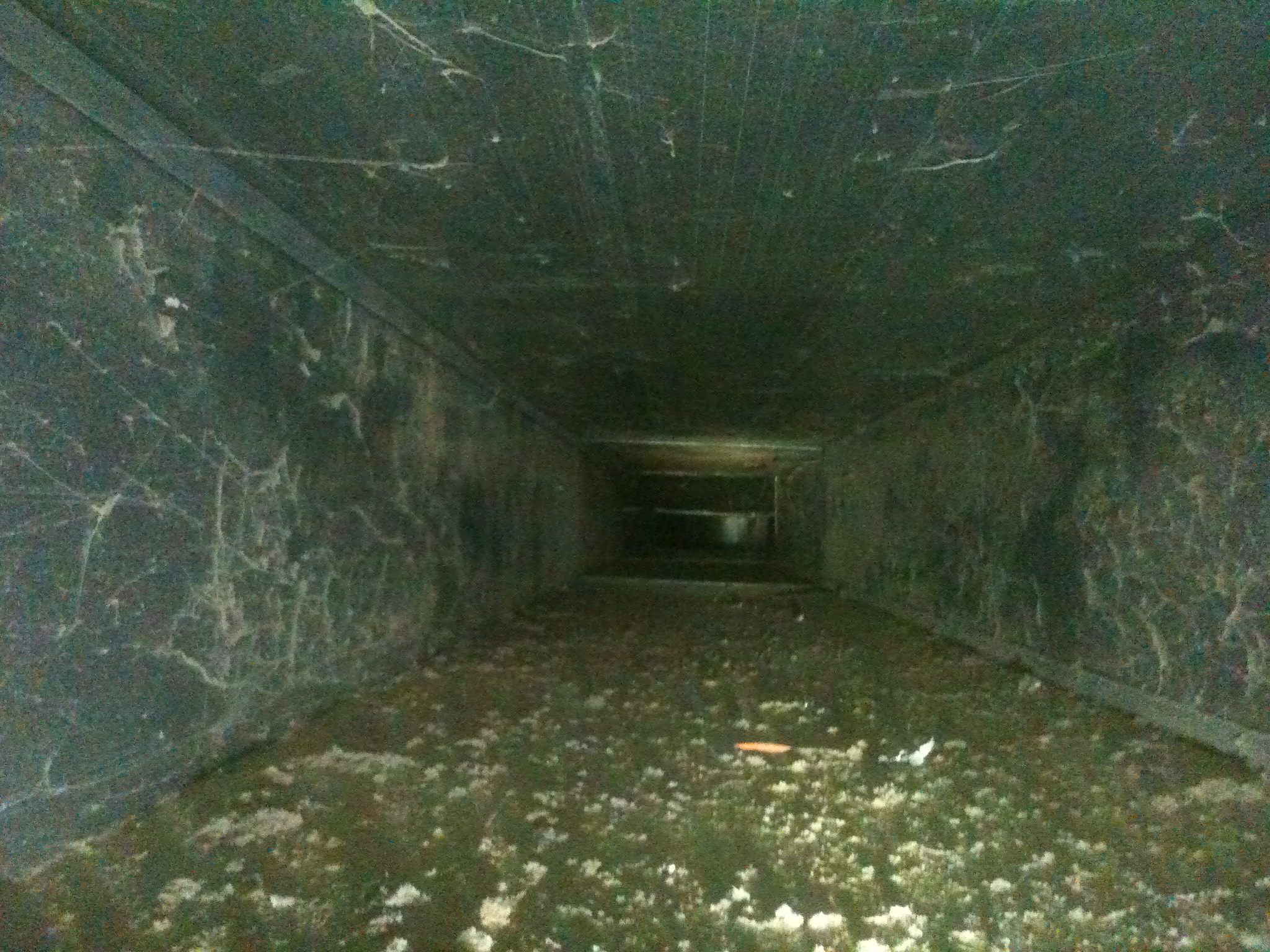Are you wondering if your homes air ducts look like this inside!